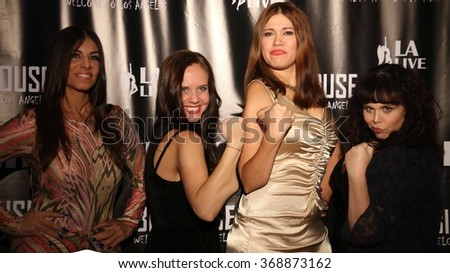 LOS ANGELES - NOV 5: Carolin von Petzholdt and the Cast of the The Boom Boom Girls of Wrestling in Los Angeles Premiere at the Regal Cinemas LA Live on November 5, 2015  in Los Angeles, CA  - stock photo