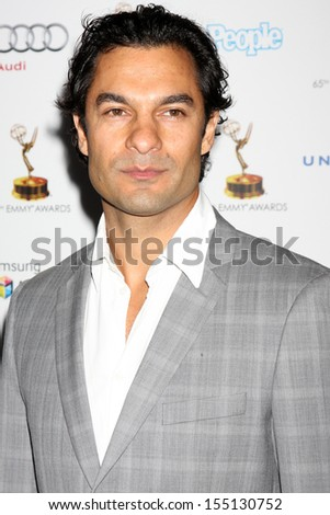 LOS ANGELES - SEP 20:  Darwin Shaw at the Emmys Performers Nominee Reception at  Pacific Design Center on September 20, 2013 in West Hollywood, CA - stock photo