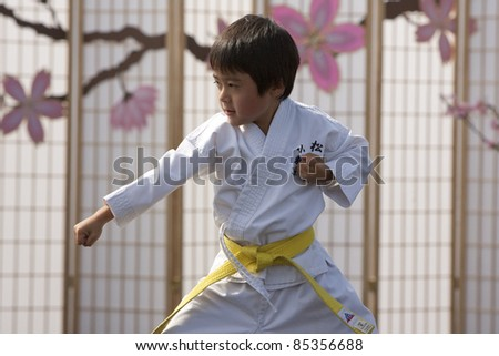 LOS ANGELES - SEPT 25:  Joshua, 6, of Matsubayahsi-Ryu Karate of Little Tokyo performs traditional Karate at the Cherry Blossom Festival on Sept 25, 2011 in Los Angeles, CA. - stock photo