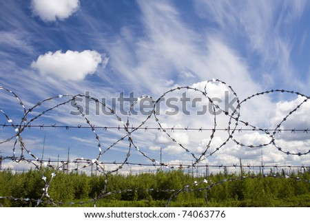 Lost freedom. Green summer forest behind barbed wire. Concept - stock photo