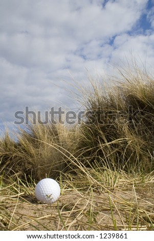 Lost golf ball in the sand dunes of a British links golf course on a bright Spring day. - stock photo