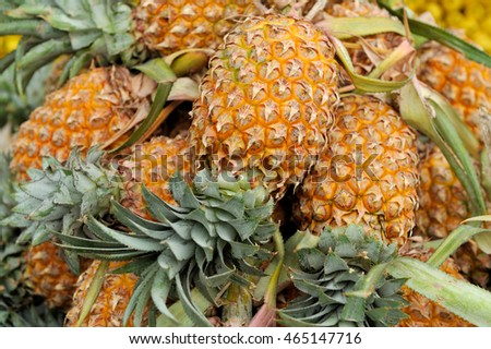 Lot of many pineapple fruit background
