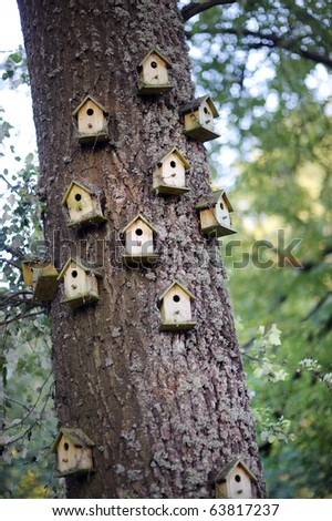 Lots of decorative nesting boxes on a tree