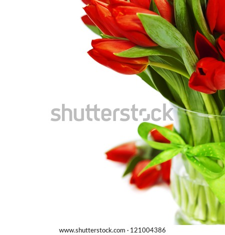 Lots of fresh red tulips on white background