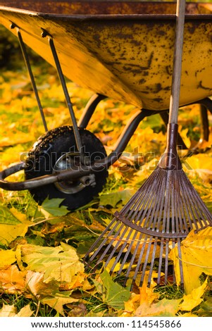 Lots of maple leafs, a rake and wheelbarrow are ready, vertical format - stock photo