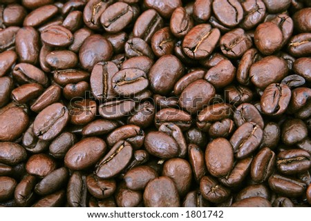 Lots of natural coffee beans, macro closeup, close-up with copy space - stock photo
