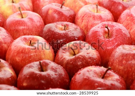 Lots of red ripe apple with drop - stock photo