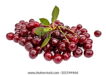 Lots of ripe cherries and a sprig of green leaves isolated on white background - stock photo