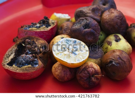 Lots of roten fruits. Apples, lemon, garnet molden dark and dried up. Environment conversion concept close up - stock photo