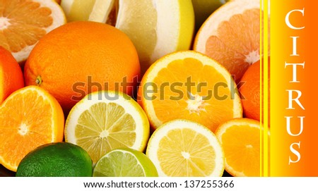 Lots ripe citrus close-up as background - stock photo