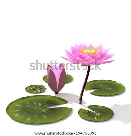 Lotus 3d rendering in background abstract. - stock photo