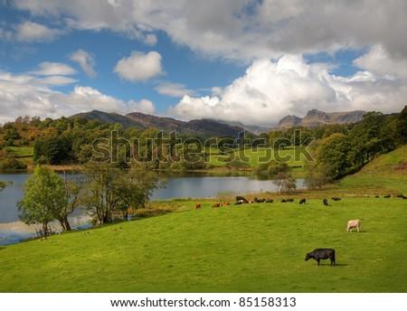 Loughrigg Tarn, Lake District, Cumbria - stock photo