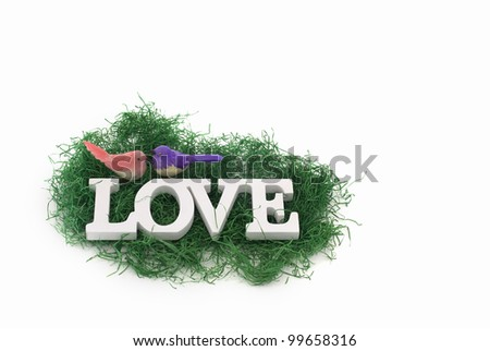 Love concept image, two colorful birds in nest with copy space for your text - stock photo