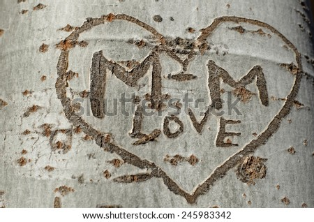 love graffiti on a tree - stock photo