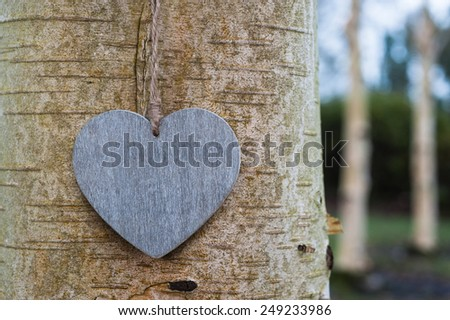 love heart tree trunk background texture  - stock photo