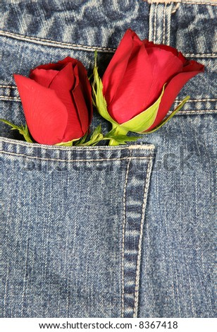 Love in my pocket (vertical): A couple of roses tucked in a denim pocket. Conceptual image for love, valentine's day, etc. - stock photo