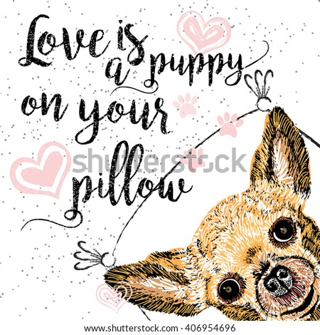 Love is a puppy on your pillow, drawn card and lettering calligraphy motivational quote for dog lovers and typographic design. Cute, friendly, smiling, inspirational doggie with hearts and sparkle.  - stock photo