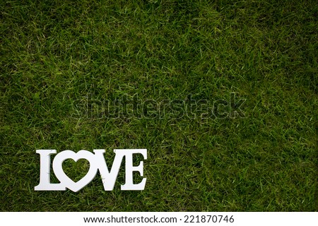 Love is in the air and on the green - Word LOVE lying in lush, well cut grass - Wedding day concept - stock photo
