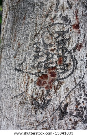 Love message  with heart on tree bark - stock photo