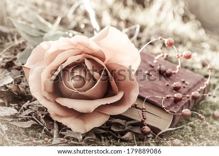 love theme with retro effect - closed book with rose on the moss in the forest at sunset - stock photo