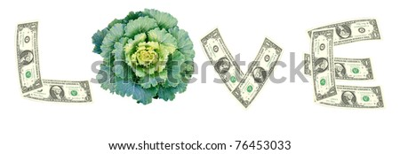 Love word from dollar bill and cabbage
