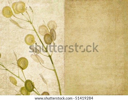lovely background image with floral elements