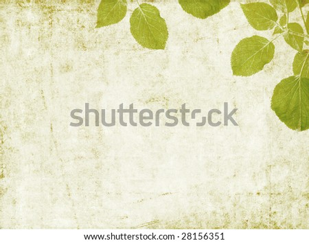 lovely background image with floral elements. very useful design element. - stock photo