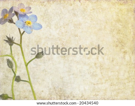 lovely brown background image with blue floral elements