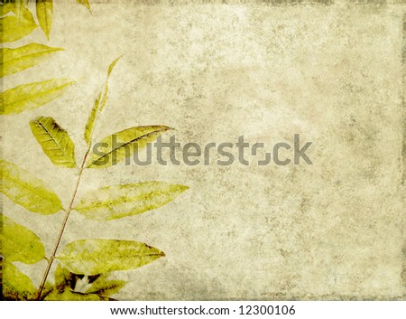 lovely brown background image with interesting earthy texture, close-up of leaves and plenty of space for text