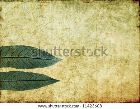 lovely brown background image with interesting texture, close-up of leaves and plenty of space for text