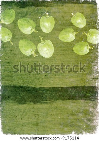 lovely brown background image with interesting texture, close-up of seeds and plenty of space for text - stock photo