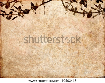 lovely brown background image with the texture of old paper, floral elements and plenty of space for text