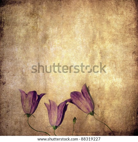 lovely earthy background and design element - stock photo