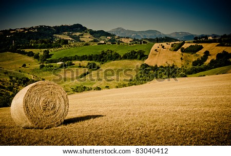 lovely green lush countryside in the morning light with hay bale in the foreground - stock photo
