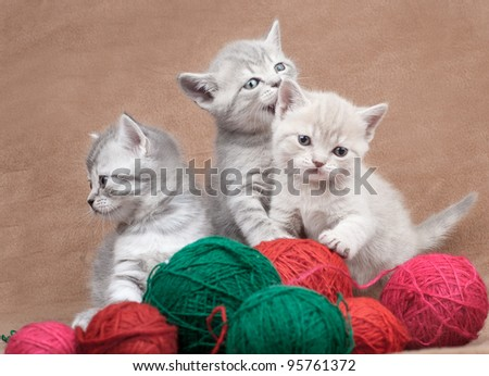 Lovely kittens with balls of threads - stock photo