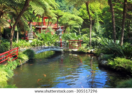 Lovely pond with goldfish.  In the depths of the park is visible Chinese gazebo.  Across the pond spanned by graceful bridge - stock photo