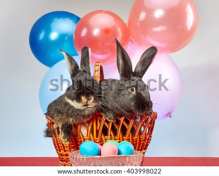 Lovely rabbits sitting in a wicker basket next to a vase with colored eggs