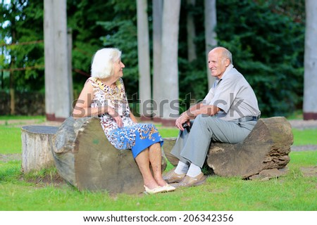 Loving active senior couple relaxing on wooden bench in recreational park on a sunny summer day - stock photo