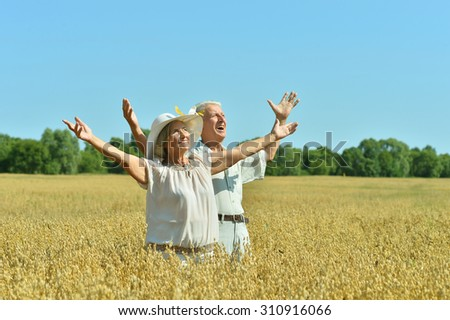 Loving mature couple in field  at summer with hands up - stock photo