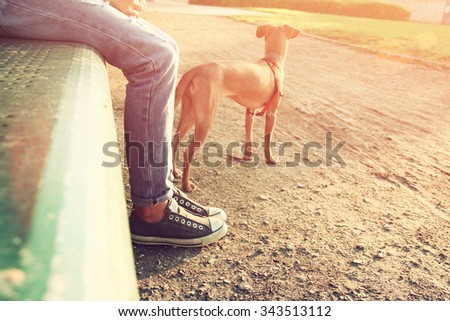 low angle image of person with his dog. selected focus. retro style filter - stock photo