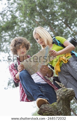 Low angle view of hiking couple reading map together in forest - stock photo