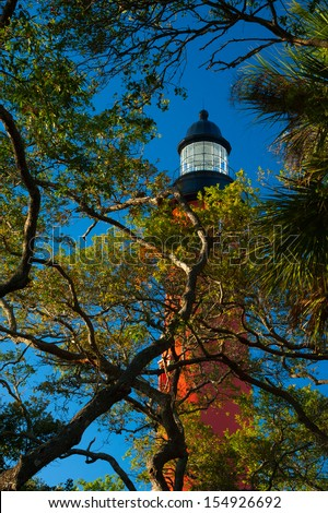 Low angle view of trees with Ponce de Leon Inlet Lighthouse And Museum in the background, Daytona Beach, Florida, USA - stock photo