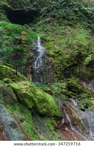 Low angle view of waterfall in a forest, Costa Rica