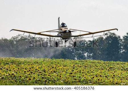 Low flying airplane spraying a field of sunflowers - stock photo