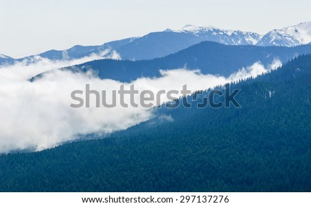 Low Laying Clouds at Olympic National Park - stock photo