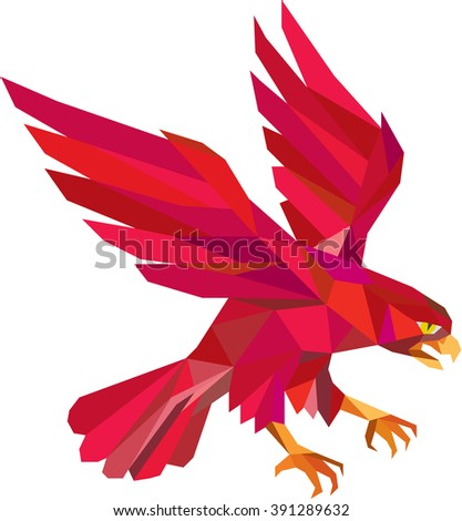 Low polygon style illustration of a peregrine falcon hawk eagle bird swooping viewed from the side set on isolated white background.  - stock photo