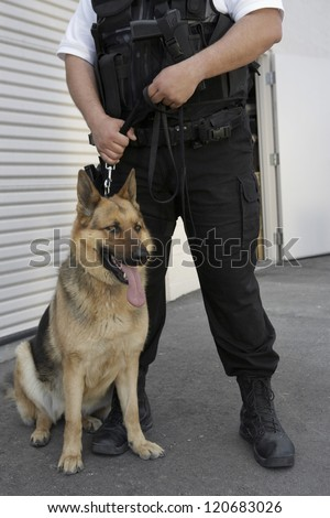 Low section of a security guard standing with trained dog