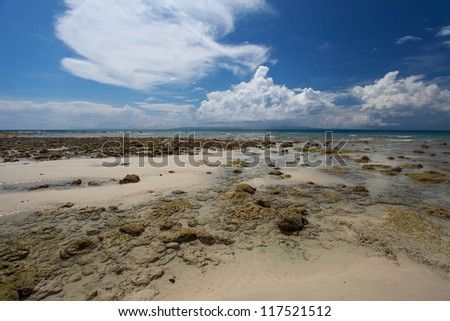 Low tide and blue sky with white clouds on the coral beach. Andaman islands.