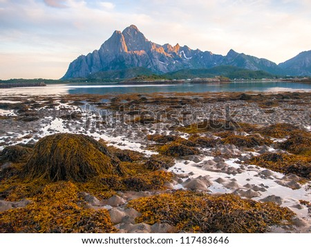 low tide on Lofoten Norway