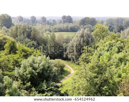lowland forrest lower rhine area germany